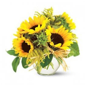 French Country Sunflowers